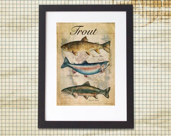 Trout Fish Print Vintage A4 or A3 Gallery Wall Art Fishing Fisherman Fly Country Decor, Country Kitchen, Farmhouse Kitchen , Fisherman Gift