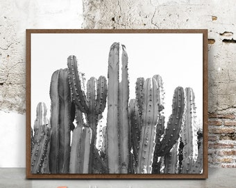 Cactus Print, Cactus Wall Art, Western Decor, Palm Springs, Black and White Cactus, Modern Minimalist, Desert Landscape Photo