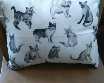 voyager cat cushion
