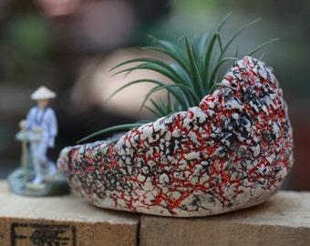 Handmade Pot for Succulent Cactus Bonsai plants stoneware planter