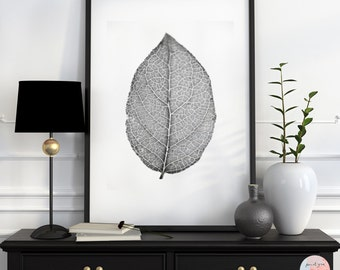 Minimalistic, fine art photography, Black / White Photography, leaf, macro