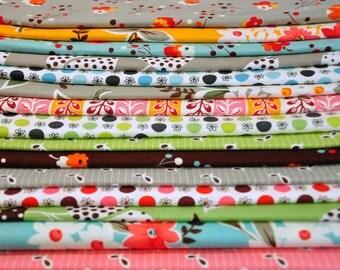 Flea Market Fancy by Denyse Schmidt destash quilt cotton fabric 15 fat quarter bundle favorites! Please read carefully