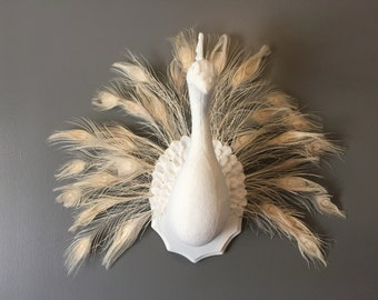 White Peacock Wall Art, Peacock Sculpture, White Peacock Faux Taxidermy, Peacock Wall Hanging, Peacock Feathers, Stuffed Animal Head