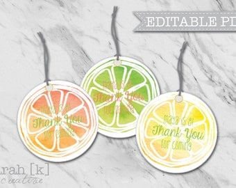 Citrus gift tags, Fruit gift tags, Summer gift tags, Summer party gifts, Fruit stickers, Citrus stickers, Summer party stickers, Pool party