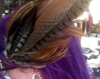 Peacock, Rooster, and Turkey Feather Hair Clip