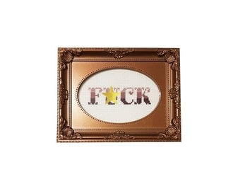 F*ck ombre framed cross stitch