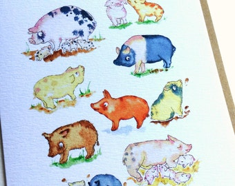 Greetings Card, Pigs and piglets blank