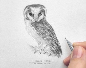 Owl drawing owl art christmas gift sale 20 50 the for Owl beak drawing