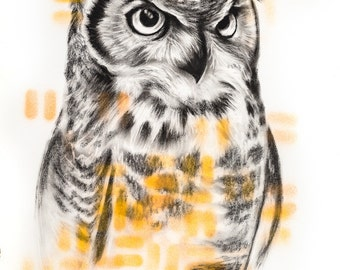 Great Horned Owl Drawing Charcoal Spray Paint Art Print