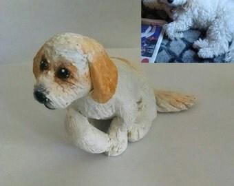 Custom pet sculpture: Coral