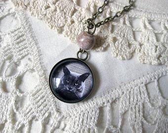 Russian Blue cat pendant necklace