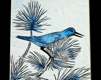 Pinyon Jay Multi-color Linocut Print