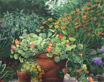Nasturtiums, Original Floral Watercolor, Ann Miller