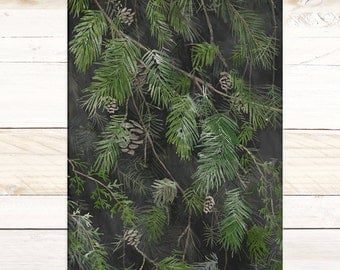 Black Pine - Quartz Collection / Watercolor botanical wall hanging, wood trim art. Scientific Canvas Posters Chart More Options