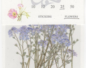 Forget Me Not Pressed Flowers - pack of 25  3 inch tall (+/- 1/2 inch) blue petal stemmed flower