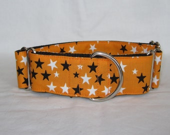 Orange Star Martingale Dog Collar - 1.5 or 2 Inch - white black fun halloween fall autumn