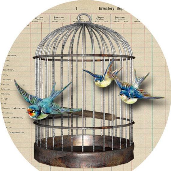 Bird Cage Sticker Download, Swallows, Vintage, Victorian Envelope Seals, Woodland Bird Stickers