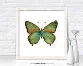 Green BUTTERFLY Painting, Butterfly Art, Butterfly Print, Original Butterfly Watercolor, Butterfly Greeting Cards, 17 Green Hairstreak