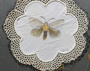 """Original Art: """"Little Moth"""""""