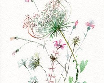 Wild Flowers WATERCOLOR original, Queen Anne's Lace flowers painting original