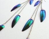 Blue Jewel Beetle Dangle Earrings, violet and ultramarine blue iridescent beetlewings, beetlewing jewellery for her