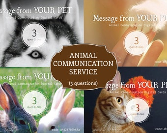 3 Questions Animal Communication Service with Taylormade Pet Photo and Message Card (Digital Gift Card)