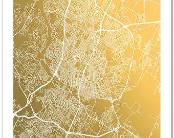 Gold Foil Austin Map Print, Gold Foil Map™ of Austin, Texas, Gold Foil Print, City Map Art, Trendy Art, Foil Pressed Art, Map Poster