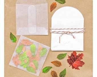 50 - Mini Glassine Envelopes - 2 1/8 inch  Square plus flap - Translucent Acid-Free - for seeds, confetti, stamps, coins & more