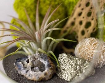 Hanging Terrarium Kit with Air Plant, Geode, Pyrite, & Desert Rose || Danish Modern || Medium Round