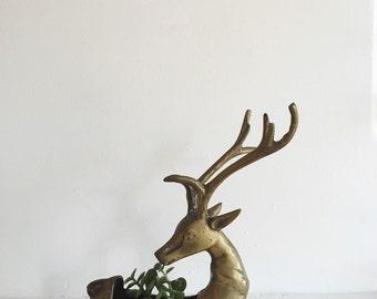 Large Brass Deer Figurine . Brass Air Plant Holder . Brass Reindeer