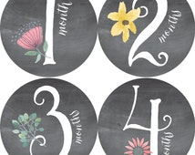 NEW,Monthly, Baby Stickers, Baby Shower or Baby Gift, BABY GIRL, 1-12 months, Chalkboard-Effect Design, Florals, Vines, Leaf