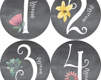 Monthly, Baby Stickers, Baby Shower or Baby Gift, BABY GIRL, 1-12 months, Chalkboard-Like background, Florals, Vines, Leaf