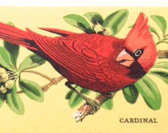 10 Unused Cardinal Stamps // Vintage 8 Cent Wildlife Conservation Red Bird Postage Stamps for Mailing