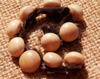 SALE! SET VTG Vegetable Ivory Buttons Original Fabric