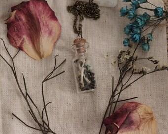 Animal Bone Little Glass Jar Terrarium Black and White Lichen Curiosity Necklace 35mm x 15mm