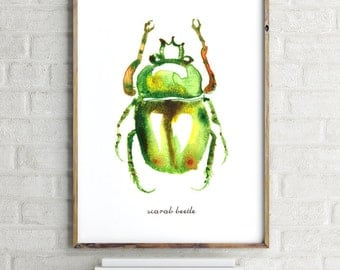 Watercolor Beetle, Bug print, Insect watercolor painting, Bug art Home decor, Insects, Entomology, Green Scarab beetle #2 Buy 2 Get 1 Free
