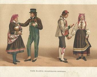 1910 Scandinavian, Norwegian...  original antique print 105 years old nice print!