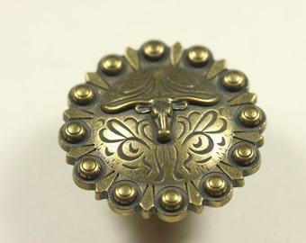 Fancy Western Style Longhorn Knob - Antique Brass