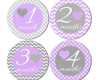 12 month stickers- Monthly Stickers- Milestone Sticker- Baby Month Stickers- Baby Girl Month Stickers- Milestone Baby Month Stickers- G22