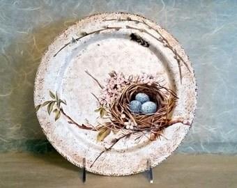 Decorative Wood Plate Featuring Bird Nest & Blue Eggs OOAK