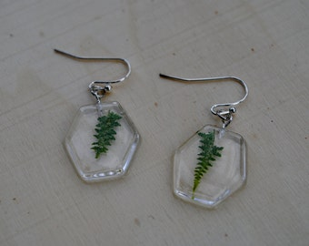 Fern Point Hexagon Earrings