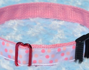 White with Pink and Peach Polka Dots on Pink Dog Collar