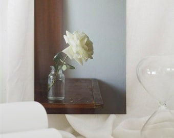 Fine art photography floral still life