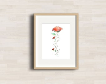 Poppy Flower - Watercolor with ink