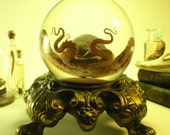 Large Wet Specimen Octopus In Glass Sphere On Antique Ornate Footed Base