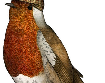 Robin in a Flat Cap: A4 Bird Print, Robin print, Birds in Hats, Birder art, Robin illustration, European Robin, Bird Art