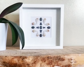 Real insect mandala wall art with beetles and citrine