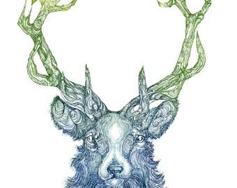 Cernunnos - Celtic - Stag - Stag head - Deer - Fine Art - Etching Print - Mythology - Animal Art - 8 x 10