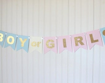 Gold, Pink & Blue Boy or Girl Banner/ Baby Shower/ Gender Reveal/ Party Decorations/ New baby/ Party decoration/ Custom/ Gold baby shower