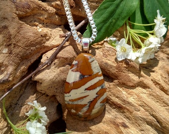 Owyhee Jasper from the Owyhee River in Oregon
